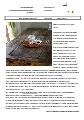 Gembrief-18-04.pdf