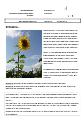 Gembrief-19-06.pdf